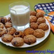 Ciasteczka ze słonecznikiem i płatkami owsianymi ( + z czekoladą)