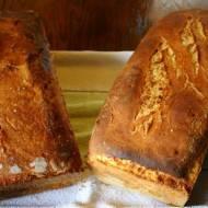 Zakwas kontra drożdże czyli pojedynek na chleby