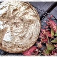 Chleb młynarza