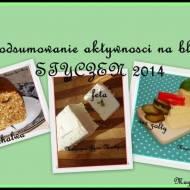 Podsumowanie aktywności na moim blogu - miesiąc STYCZEŃ 2014