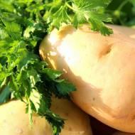 Wiosenne (spiżarniane) porządki, czyli zupa krem z ziemniaków i pora z lubczykiem