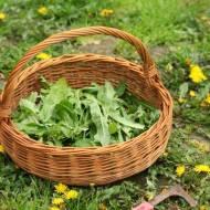 Dzika zielenina (Horta) – nieznany skarb diety śródziemnomorskiej