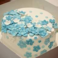 Tort na specjalne okazje- czekoladowo- malinowy/ Special occasion cake- chocolate- raspberry