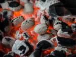 Brykiet czy węgiel drzewny co wybrać na grilla