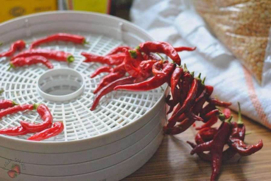 Jak suszyć papryczki chili?