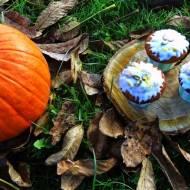 Muffiny dynia z wiśnią