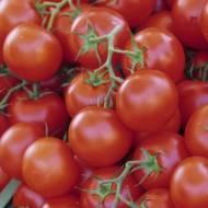Zupa Pomidorowa Czysta