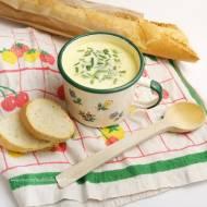 Prosta zupa serowa ze szczypiorkiem