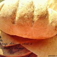 Domowy chleb z czosnkiem i oregano - gotowy w 1 h!