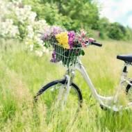 5 razy TAK dla jazdy rowerem!