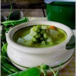 Zupa groszkowa / Junge Erbsensuppe