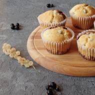 Dwukolorowe muffiny z porzeczkami