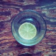 Napój cytrynowy/limonkowy na upały (stevia)
