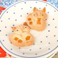 Kruche ciasteczka- liski i jeżyki.