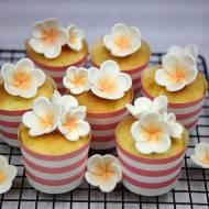 Drożdżowe babeczki z gorzkimi pomarańczami i lukrem.
