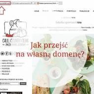 Jak przejść na własną domenę czyli zmienić adres bloga z .blogspot na .pl?