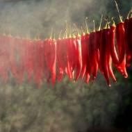 12 przypraw z całego świata i ich zastosowanie w kuchni roślinnej