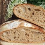 Tartine bread, majowa piekarnia