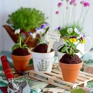 Czekoladowo różane babeczki ogrodniczki na Dzień Matki + KONKURS