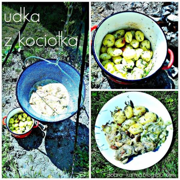 d88da5c195a301 Przepis na Udka z kurczaka duszone w kociołku węgierskim - Dobra ...
