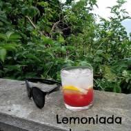Błyskawiczne piątki - Lemoniada arbuzowa z cytryną