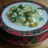 zupa  kalafiorowa  wegetariańska z  kluskami