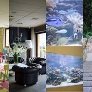 HOTEL BIAŁY KAMIEŃ HOTEL & MEDI  SPA