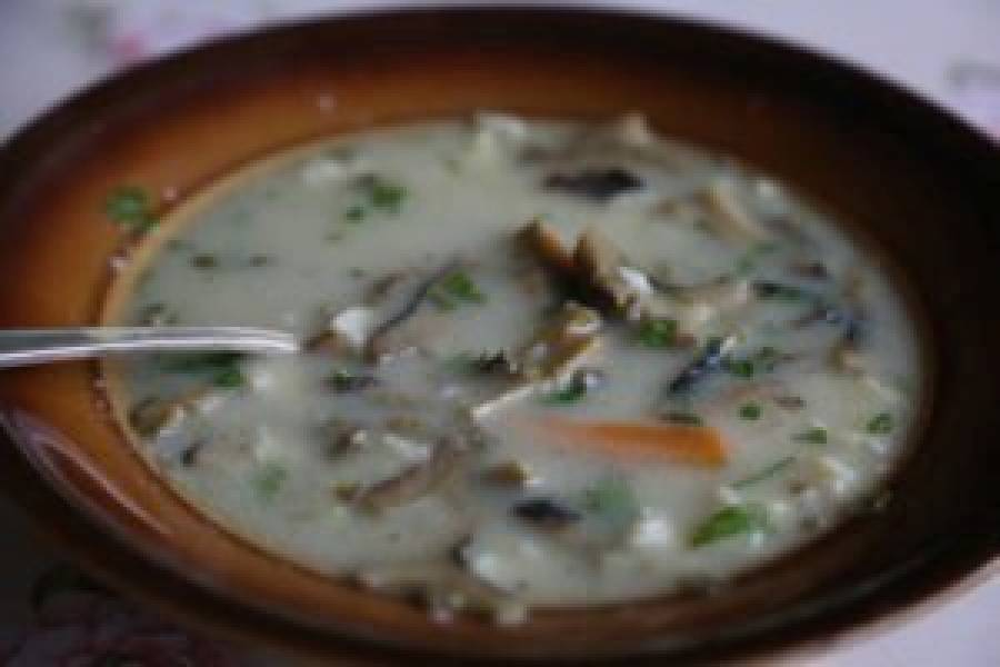 Zupa grzybowa z gąsek