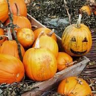 Halloween – dynia czy Chrystus