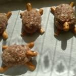 Klopsiki wesołe żółwiki
