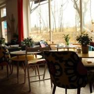 Dobra kawa w Jeleniej Górze? – KUKUTU CAFE !!!