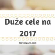Duże cele na 2017 rok