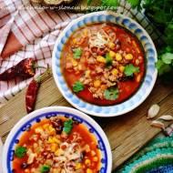 Zupa meksykańska, czyli miska troskliwego ciepła na zimowe mrozy
