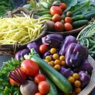 Jak przechowywać owoce i warzywa?