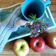 Zjedz jabłko na zdrowie. Jabłko właściwości