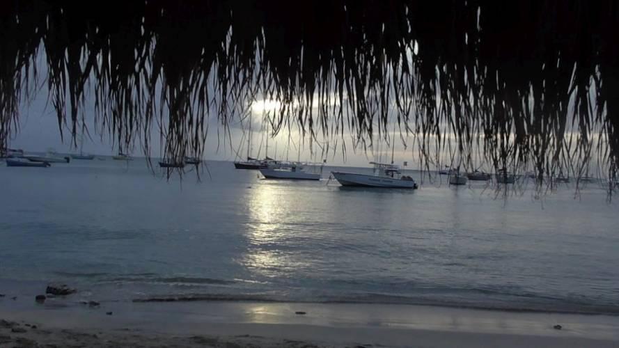 """Pierś z indyka po karaibsku """"Paradiso""""."""