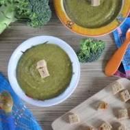 Zupa krem z brokułu dla dzieci