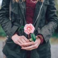 6 kobiecych motywów blogowych dla WordPressa