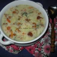 Zupa z kurkami i kluseczkami
