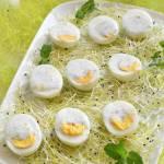 Dietetyczna przystawka z jajkami w sosie czosnkowo-miętowym w roli głównej