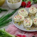 Wiosenne jajka faszerowane