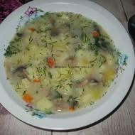 Zupa pieczarkowa z ziemniakami i płatkami ryżowymi
