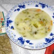 zupa ogórkowa z koprem włoskim...