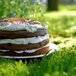 Tort czekoladowy z bitą śmietaną, dżemem wiśniowym i malinami