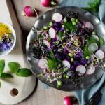 Wiosenna sałatka z ziemniaków truflowych i mięty z czarną quinoą i lokalnymi dodatkami