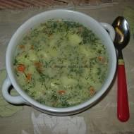 Zupa koperkowa z płatkami owsianymi