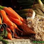 Suszone warzywa, czyli domowa vegeta.