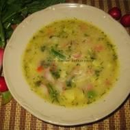 Zupa jarzynowa z rzodkiewkami