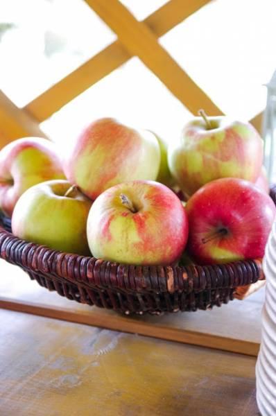 Szczepanówka zaprasza na śniadanie w jabłkowym sadzie
