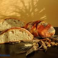 Chleb długorosnący pszenno - orkiszowy z otrębami i nasionami konopi